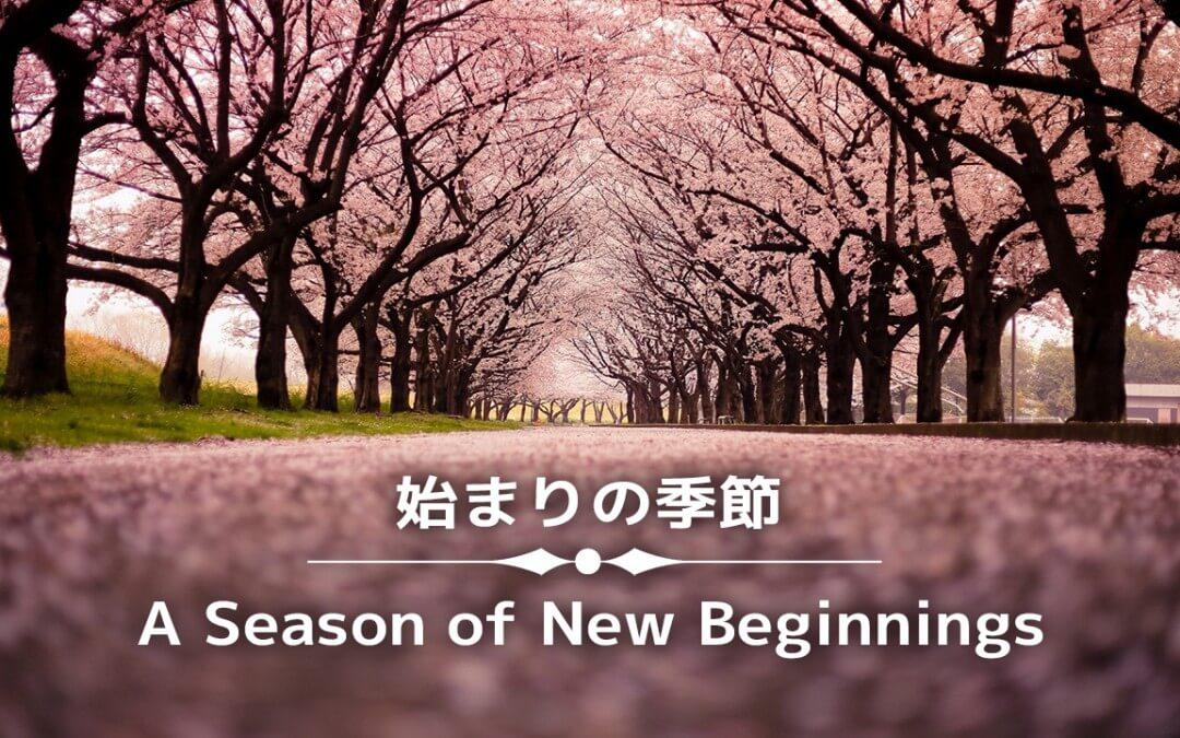 A Season of New Beginnings pm part 4